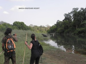 Jungle treks with Bardia Kingfisher Resort 13