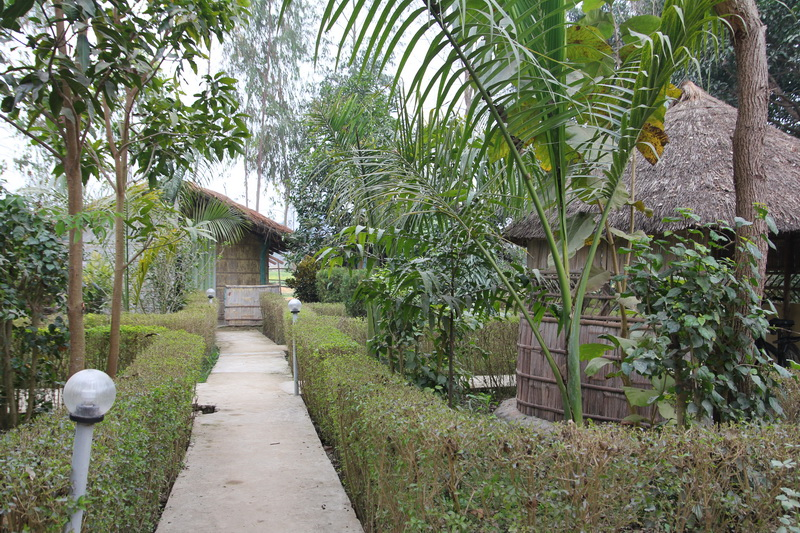 Bardia Kingfisher Resort cottages
