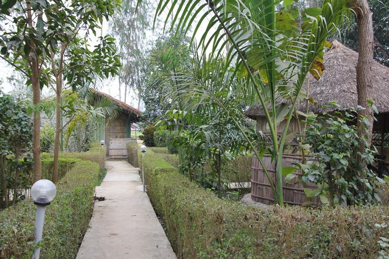 Bardia Kingfisher Resort cottages